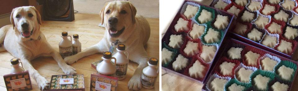 Tuck & Shack – Maple Sugar Attack!